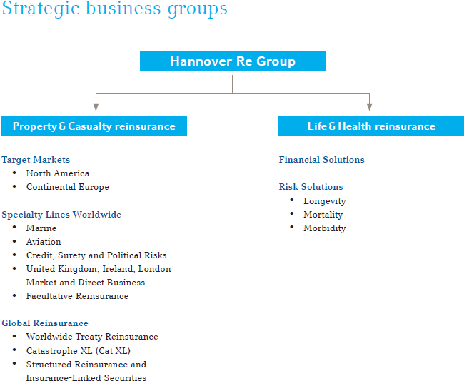 Strategic business groups